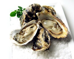 Half Shell Oyster Meat 半壳生蠔