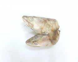 Ling Fish Head 鲮鱼头